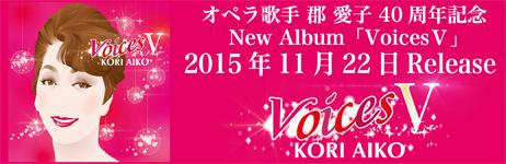 Voices5_banner